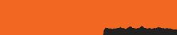 Teligence Logo